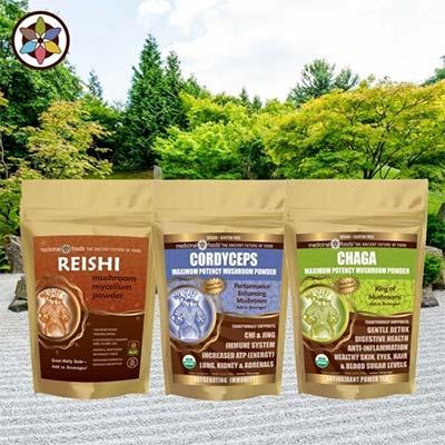 Chaga Mushroom Reishi Cordyceps Organic Promo