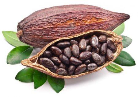Chocolate made from 100% Organic Ecuadorian Heirloom Criollo Cacao