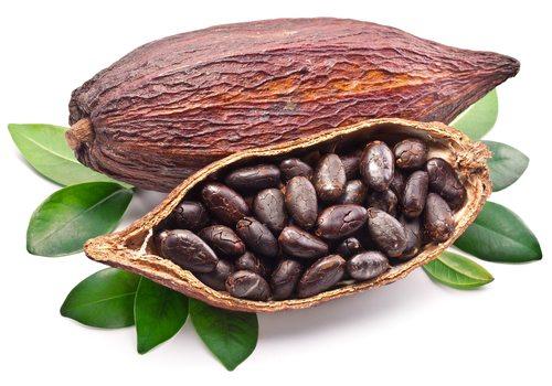 cacao-005