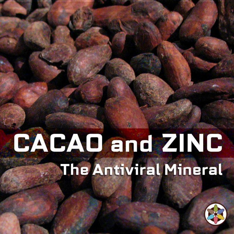 Zinc Antiviral Mineral Cacao