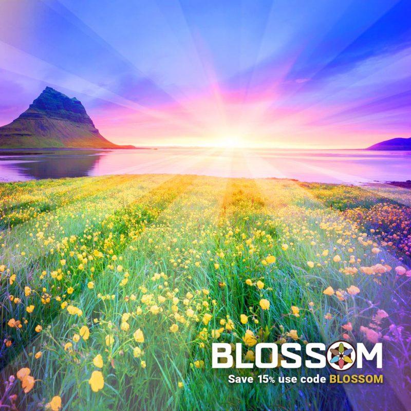 Easter Sunrise Flowers Ocean
